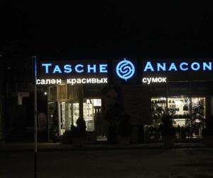 таше-анаконд